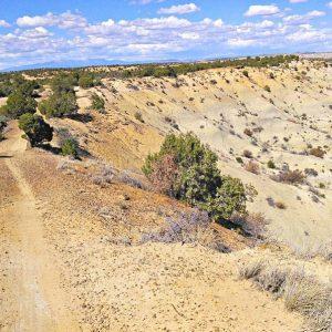 John-Geronimo-Road-Apple-Kinsey-West-NM