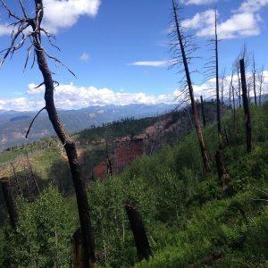 Missy-Thompson-Missionary-Ridge-Scenic-Trail