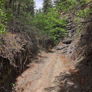 @ikuzus43-Perins-Gulch-Overend-Mountain-Durango-Trails-2000