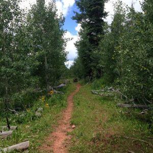 Missy-Thompson-Missionary-Ridge-Junction-Stevens-Creek-Durango