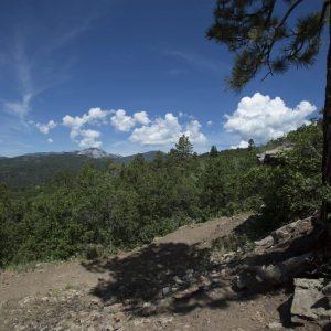 Log Chutes 1 Durango Trails 2000