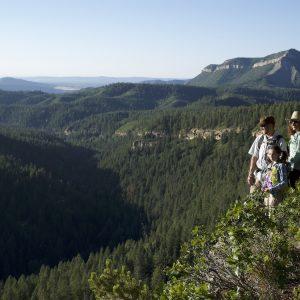 Hiking on the Colorado Trail near Durango