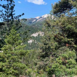 Log Chutes 2 Westview Trail Durango