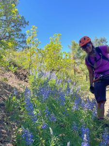 log-chutes-trail-report-durango-colorado-2