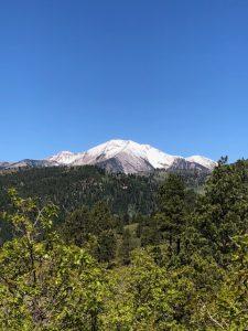 log-chutes-trail-report-durango-colorado-3